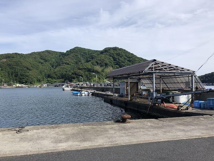 伊根漁港(京都・伊根)の釣り場情報│丹後エリア 伊根漁港の釣りポイント ①漁港西側・堤防