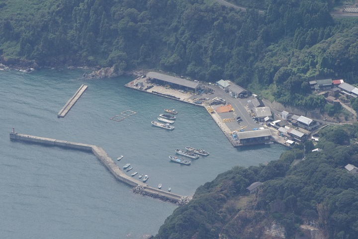 新井崎漁港(京都・伊根)の釣り場情報