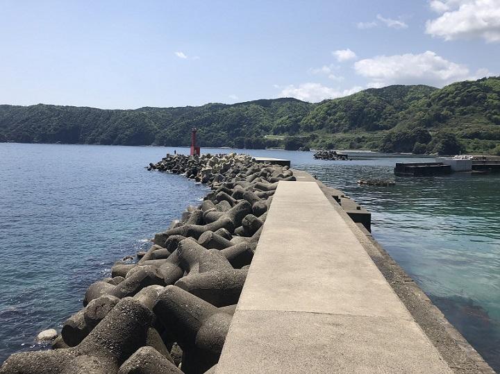 釣りファミ 釣り場情報 蒲入漁港 京都 伊根