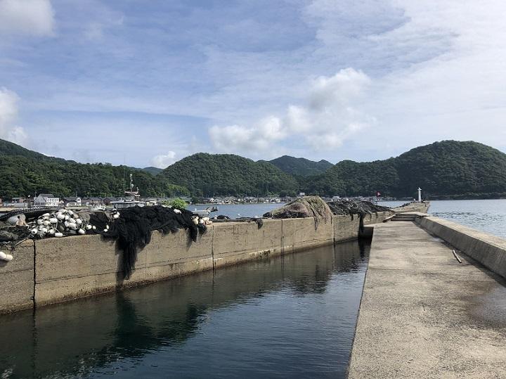 釣りファミ 釣り場情報 養老漁港 京都 宮津