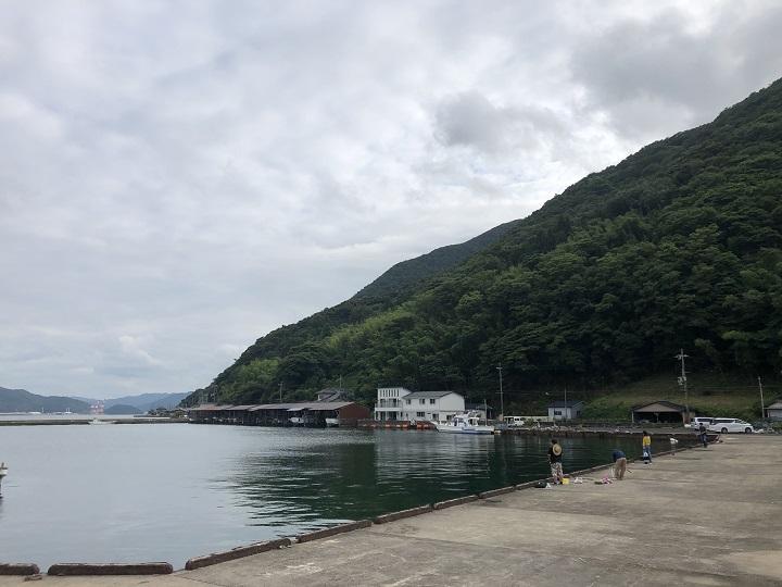 釣りファミ 釣り場情報 白杉漁港 京都 舞鶴