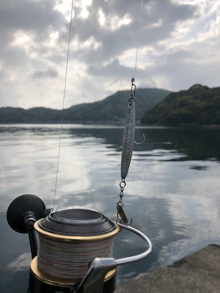 釣りファミ 京都・伊根の波止からショアジギングでアコウを狙うin伊根網干場