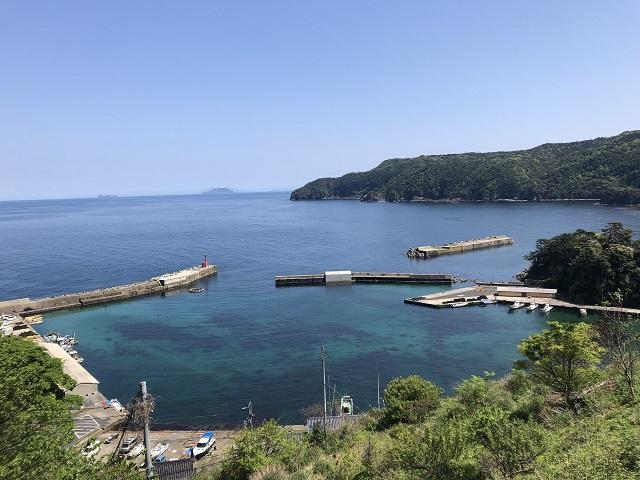 釣りファミ 蒲入漁港 漁港めし 京都 伊根