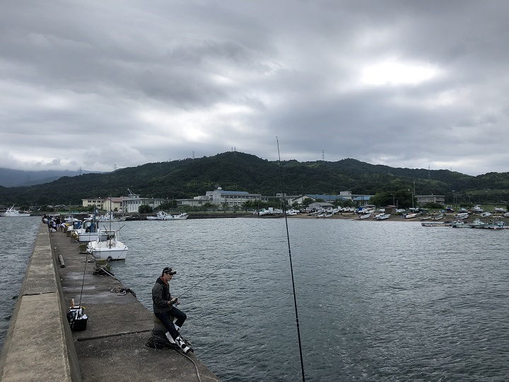 釣りファミ 釣り場情報 栗田漁港 京都 宮津