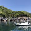 京都・伊根の釣り場情報一覧 ~釣れるポイント総まとめ~