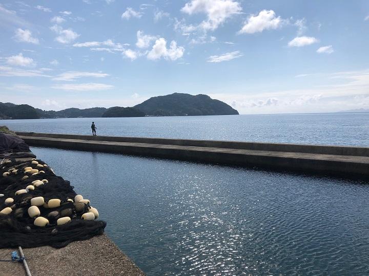 釣りファミ日記 釣行記 京都・宮津の養老漁港、ソフトワーム「ベイティ」でガシラを釣る!
