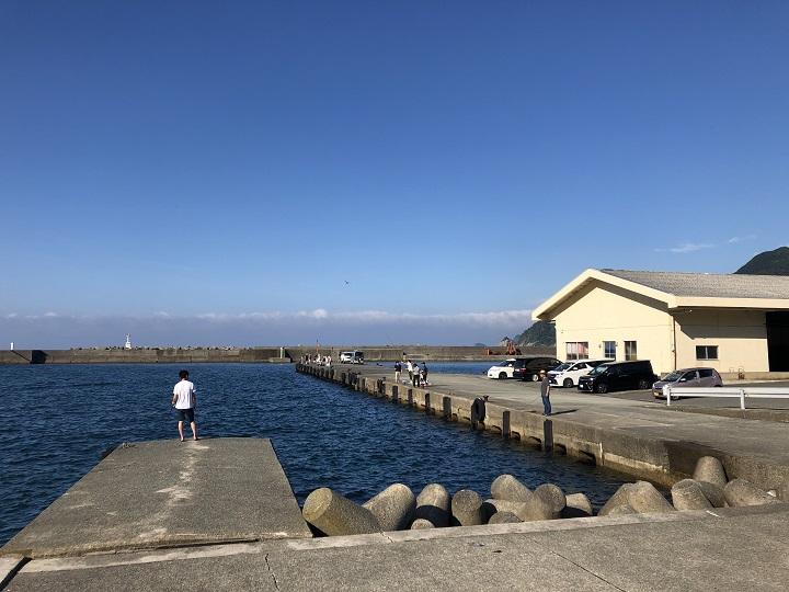釣りファミ 釣り場情報 浜坂漁港 漁協前