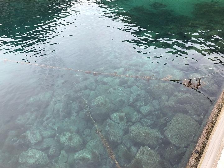 釣りファミ 蒲入漁港(京都・伊根)でデイゲーム。エギング・ショアジギングで嬉しい釣果!