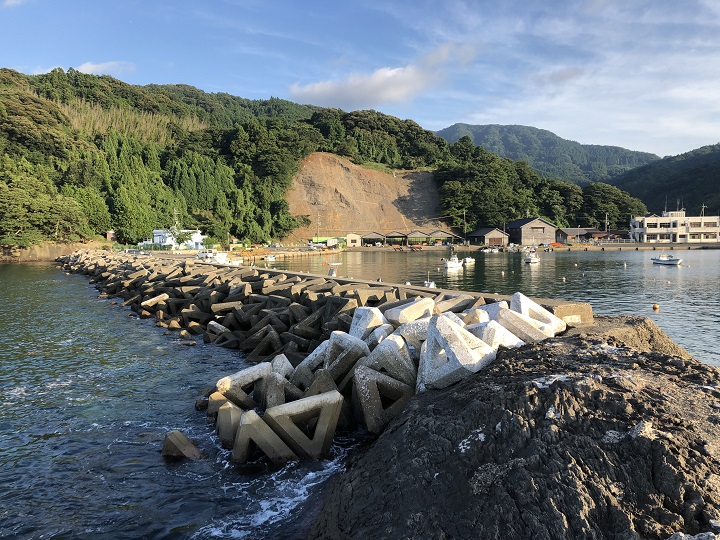舞鶴田井漁港(京都・舞鶴)の釣り場情報