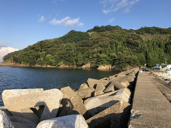 舞鶴田井漁港(京都・舞鶴)の釣り場情報05
