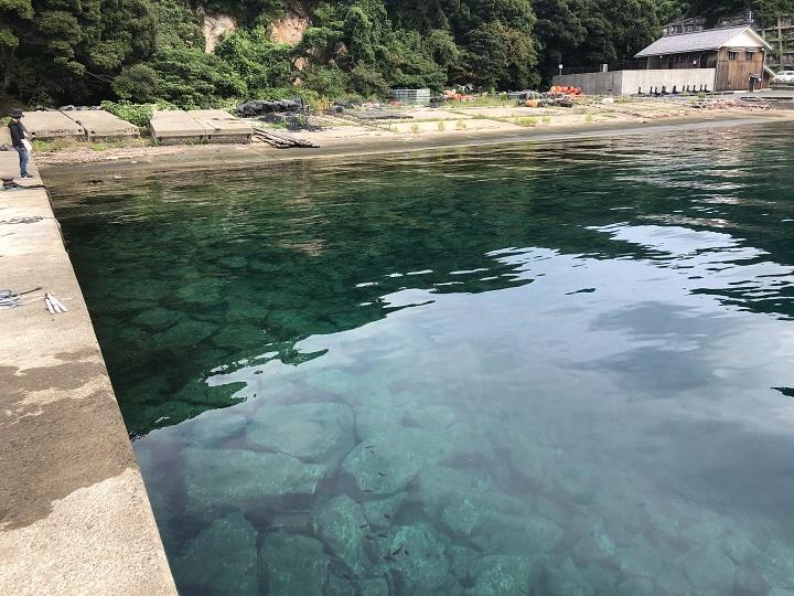京都で釣り場に困ったら!子どももママも楽しめる初秋の伊根の海 海がきれい01