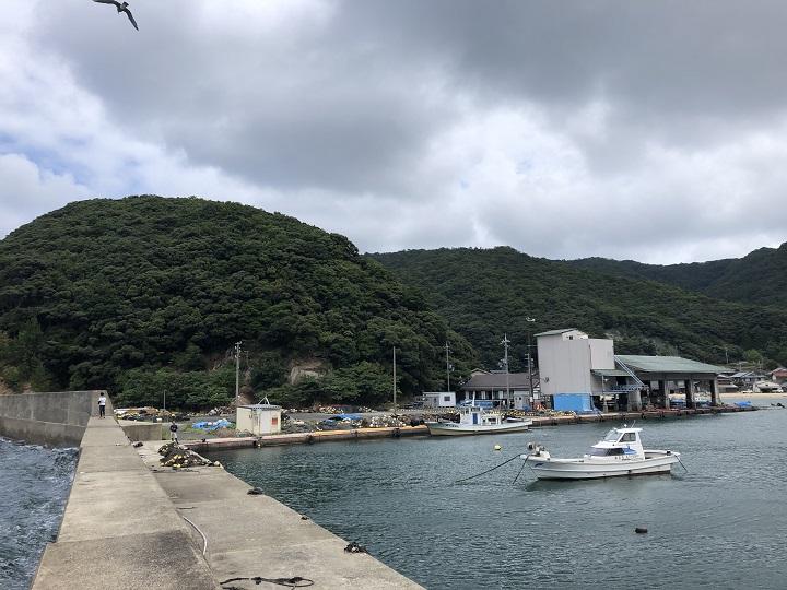 野原漁港(京都・舞鶴)の釣り場情報