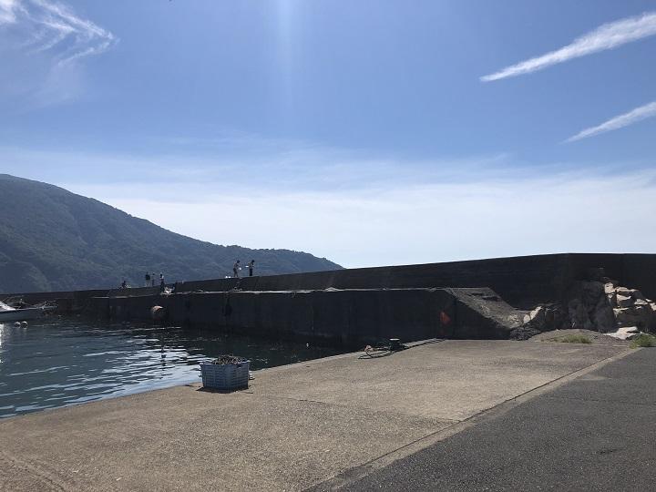 小橋漁港(京都・舞鶴)の釣り場情報 大波止13