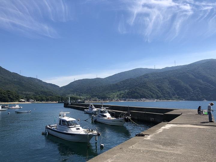 小橋漁港(京都・舞鶴)の釣り場情報 大波止3