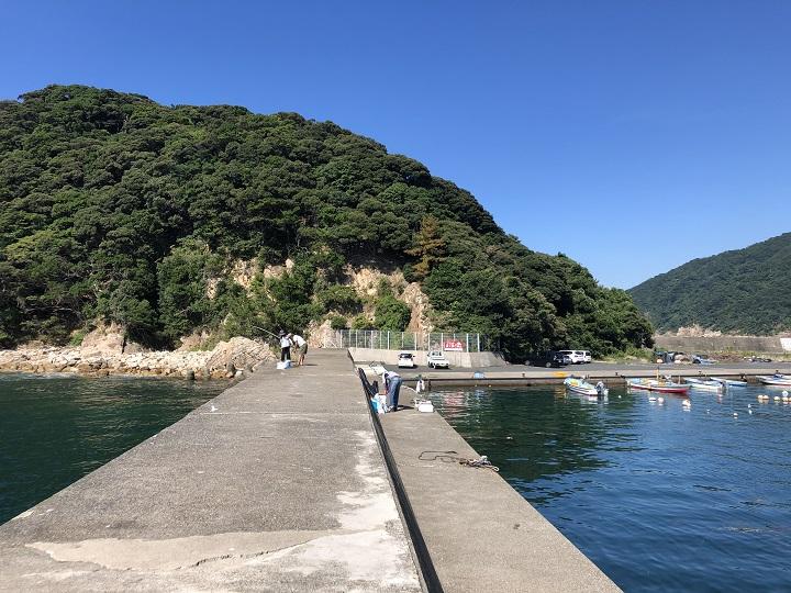 小橋漁港(京都・舞鶴)の釣り場情報 大波止4