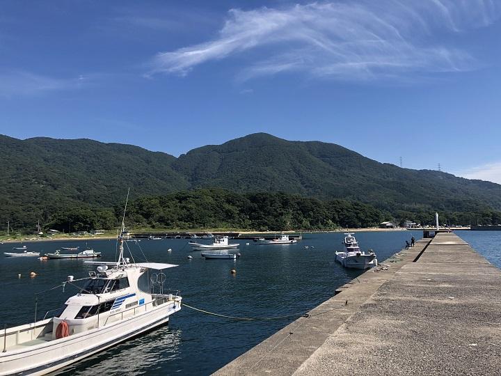 小橋漁港(京都・舞鶴)の釣り場情報 大波止7