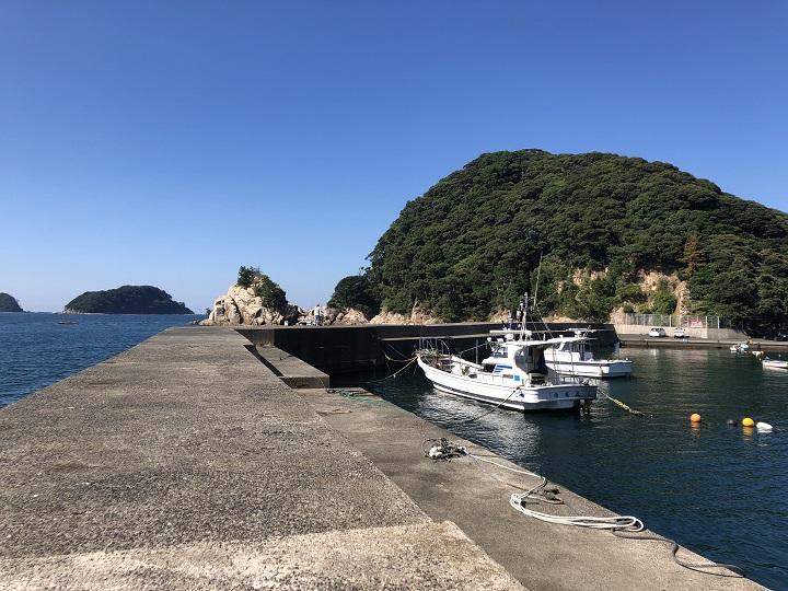 小橋漁港(京都・舞鶴)の釣り場情報 大波止8