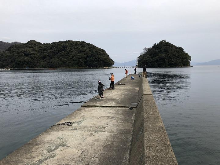 京都・伊根で家族で釣り。ガシラとアオリイカを釣る!3月釣行