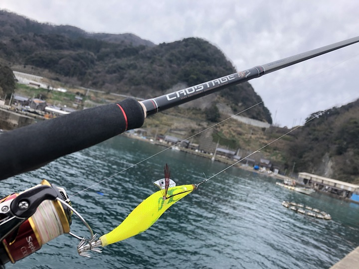 京都・伊根の釣り場、蒲入漁港でデイエギング