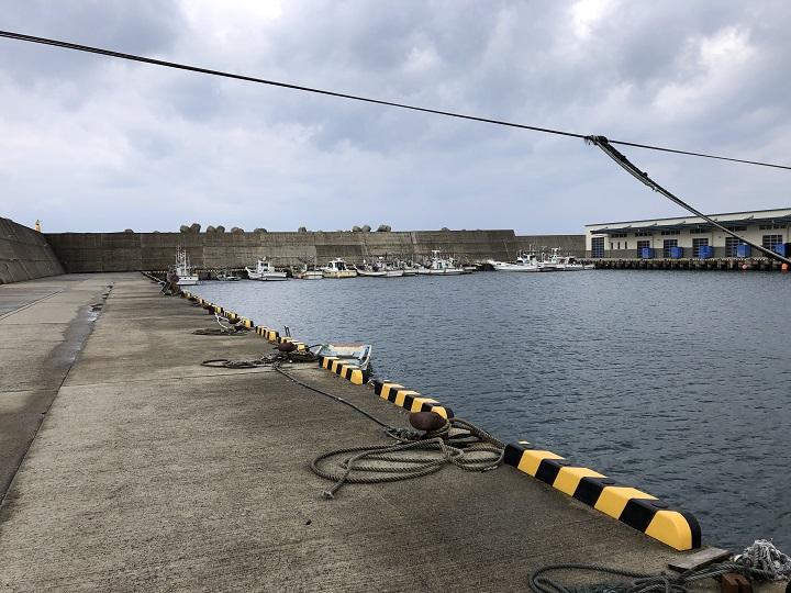 釣りファミ 間人漁港(京都・京丹後)の釣り場情報 港内