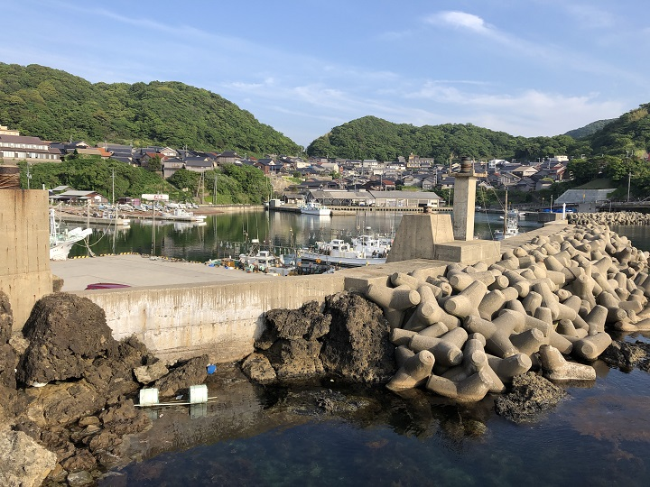 釣りファミ 間人漁港(京都・京丹後)の釣り場情報 小波止