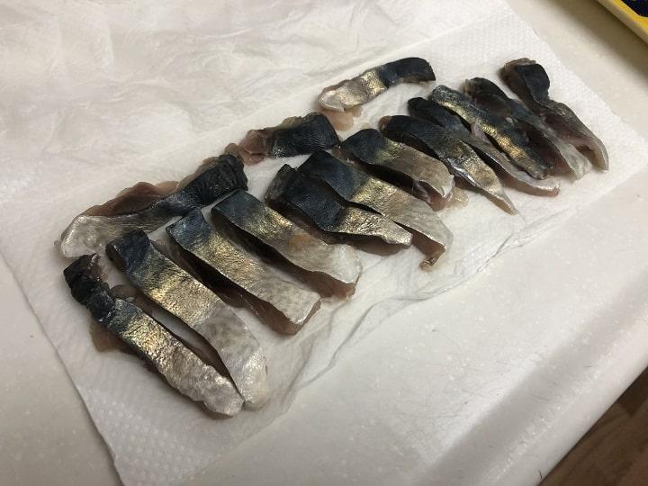 釣り餌|サバの切り身の作り方・付け方!鯖は安くて長持ちの万能エサ